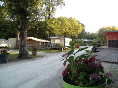 Camping Walmone - Camping Charente-Maritime - Image N°15