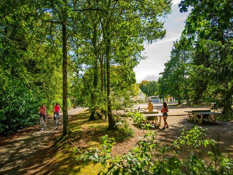 Camping Bois de Pleuven - Camping Finisterre - Image N°13