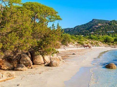 Résidence San Martinu - Camping Corse du sud - Image N°12