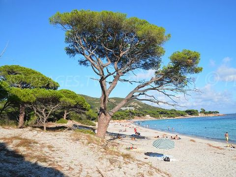 Résidence San Martinu - Camping Corse du sud - Image N°13