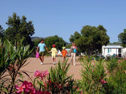 Camping Acqua E Sole - Camping Corse - Image N°10