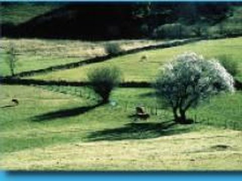 Beau Rivage - Camping Sites et Paysages - Camping Aveyron - Image N°56