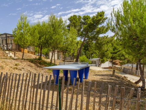 Camping Le Bois de Pins - Camping Pyrenees-Orientales - Image N°9