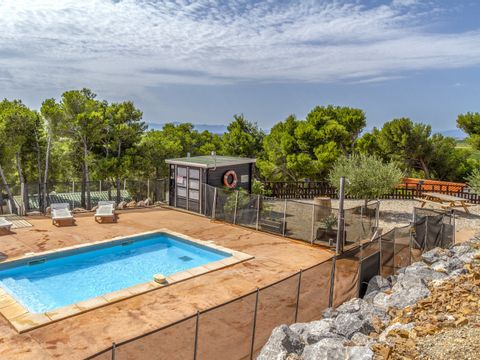 Camping Le Bois de Pins - Camping Pyrenees-Orientales - Image N°2