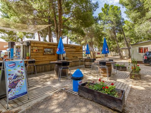 Camping Le Bois de Pins - Camping Pyrenees-Orientales - Image N°10
