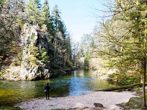 Camping Club Lac de Bouzey - Camping Vosges - Image N°22