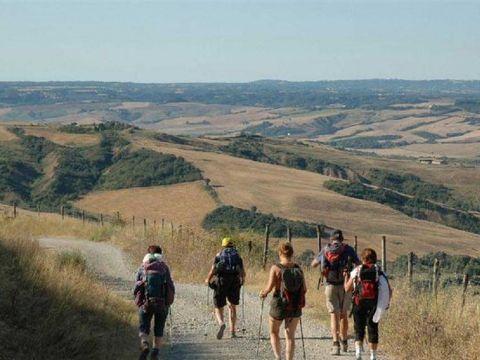 Camping Boschetto di piemma - Camping Sienne - Image N°10