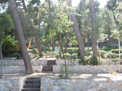Camping Internazionale San Menaio - Camping Foggia - Image N°5