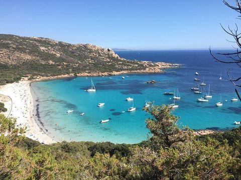 Camping Olva  - Camping Corse du sud - Image N°14