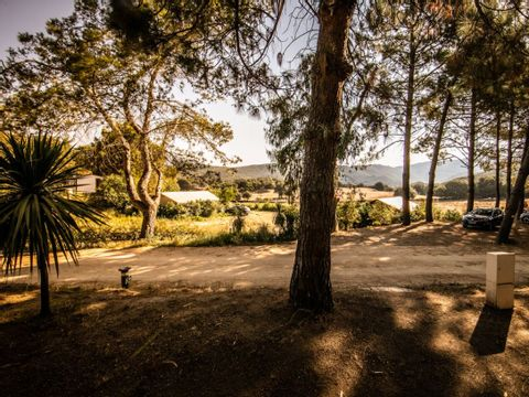 Camping Olva  - Camping Corse - Image N°5