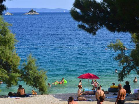Camping  Belvedere - Camping Dalmatie du sud - Image N°10