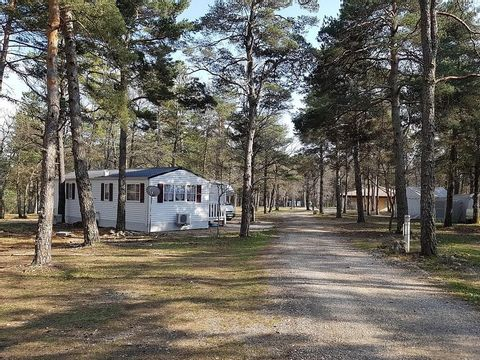 Camping Du Défends  - Camping Vaucluse - Image N°5