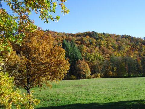 Camping des Prairies d'Auvergne - Camping Puy-de-Dome - Image N°12