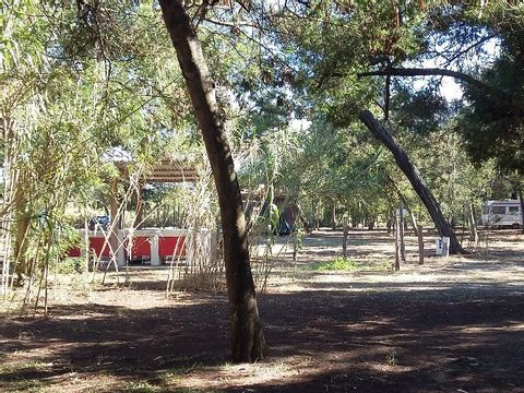 Camping Europa Beach - Camping Corse - Image N°6