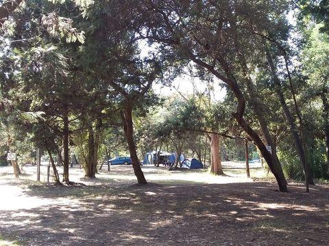 Camping Europa Beach - Camping Nordkorsika - Image N°7