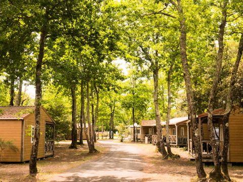 Camping Siblu Domaine de Soulac - Funpass inclus - Camping Gironde - Image N°20