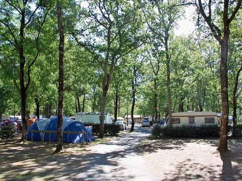 Camping Les Genêts - Camping Gironde - Image N°13