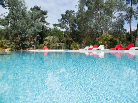Camping des Pins - Camping Paradis - Camping Gironde - Image N°3