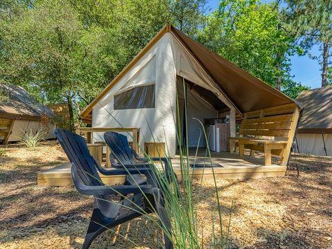 Camping des Pins - Camping Paradis - Camping Gironde - Image N°29
