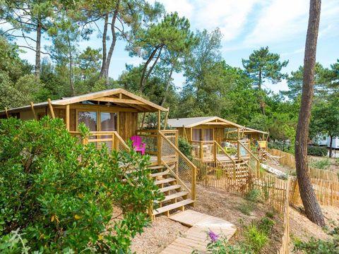 Camping des Pins - Camping Paradis - Camping Gironde - Image N°22