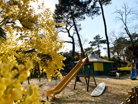 Camping des Pins - Camping Paradis - Camping Gironde - Image N°5
