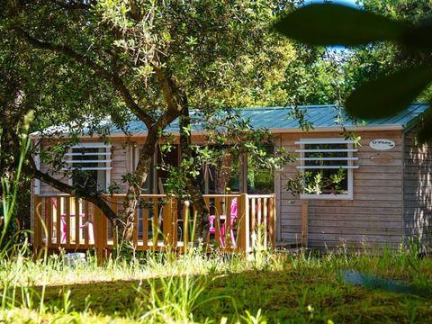 Camping des Pins - Camping Paradis - Camping Gironde - Image N°24