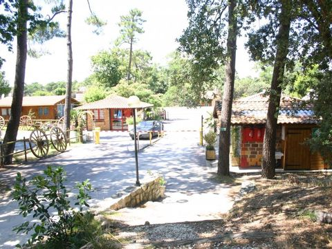 Camping Mussonville - Camping Gironde