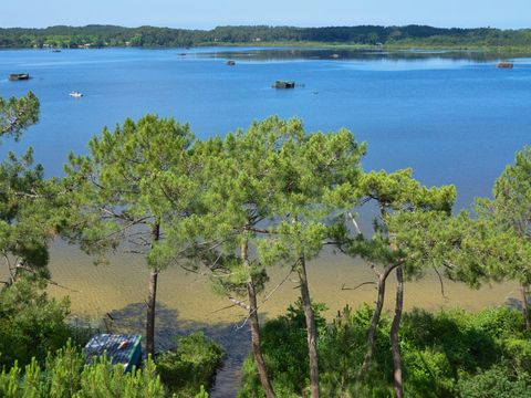 Résidence-Club Les Villas du Lac - Camping Landes - Image N°12