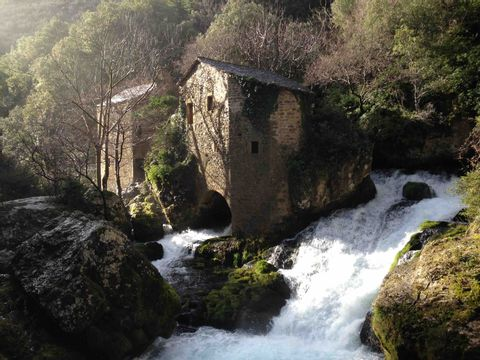 Camping Les Gorges de l'Herault - Camping Gard - Image N°19