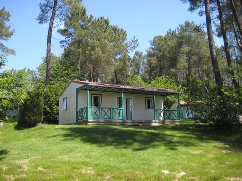 Camping Domaine des Grands Pins  - Camping Dordogne - Image N°9