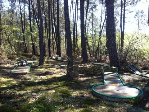 Camping Domaine des Grands Pins  - Camping Dordogne - Image N°7