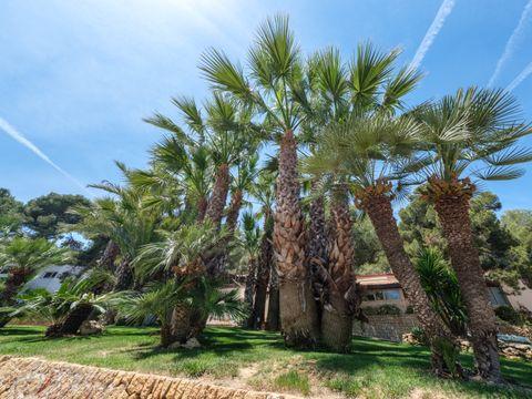 Camping Torre de la Mora - Camping Tarragona - Image N°35