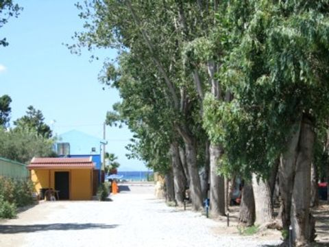 Camping Salicamp Boschetto Holiday - Camping Messine - Image N°8