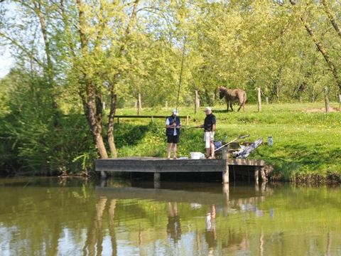 Camping Saône Valley  - Camping Haute-Saone - Image N°5