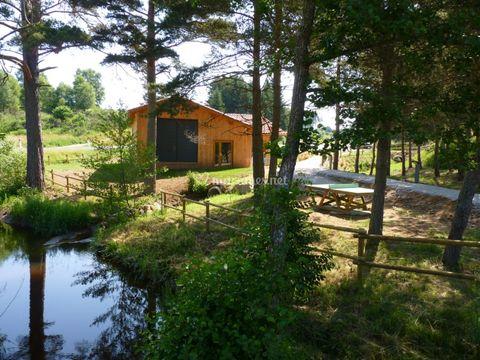 Camping Les Chalets du Haut Forez - Camping Loire - Image N°11