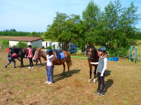 Camping Les Chalets du Haut Forez - Camping Loire - Image N°13
