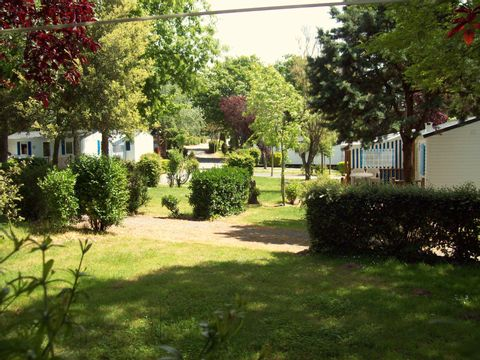 Camping Le Roc  - Camping Vendée - Image N°18