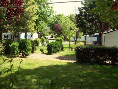 Camping Le Roc  - Camping Vendée - Image N°20