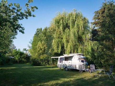Camping Ferme Pédagogique de Prunay - Camping Loir-et-Cher - Image N°16