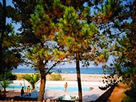 Camping Olmello Plage  - Camping Corse - Image N°2