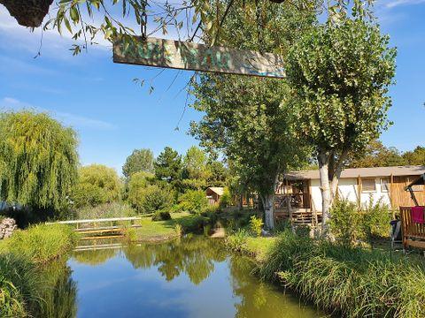 Camping Le Nauzan Plage  - Camping Charente-Maritime - Image N°12