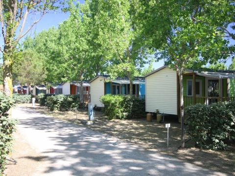 Camping Les Sablines - Camping Herault - Image N°21