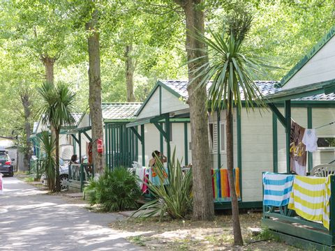 Camping Club Le Napoléon  - Camping Herault - Image N°7