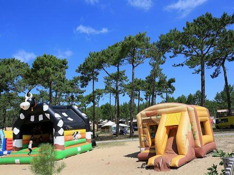 Camping Les Tourterelles  - Camping Landes - Image N°6