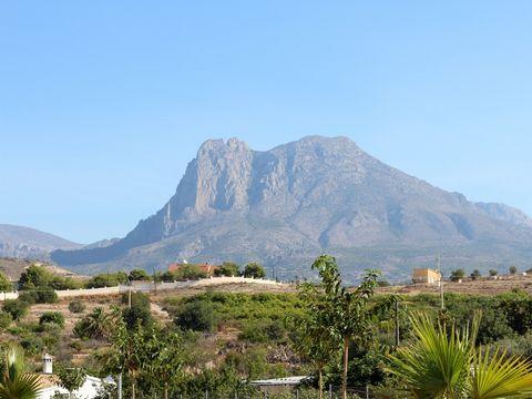 Camping Alicante Imperium  - Camping Costa Blanca - Image N°18