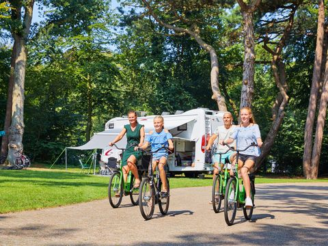 Wassenaar  Camping Duinrell - Camping Wassenaar - Afbeelding N°27