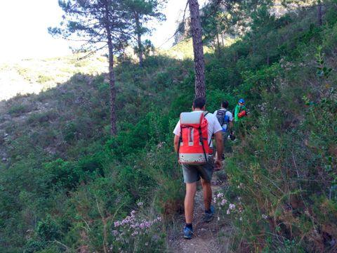 Camping San Vicente - Camping Région de Valence - Espagne - Image N°9