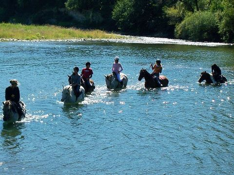 Camping Les Platanes - Camping Ardeche - Image N°13