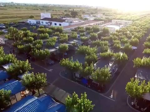 Camping Monmar - Camping Castellón - Image N°19