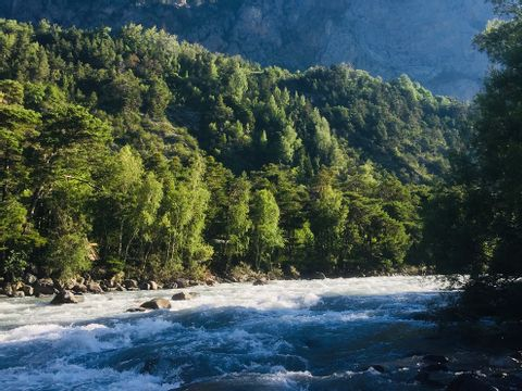 Camping River - Camping Alpes-de-Haute-Provence - Image N°9